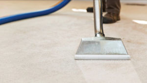 Carpet Cleaners Northern Beaches