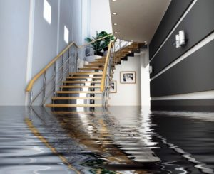 Flood Restoration Northern Beaches